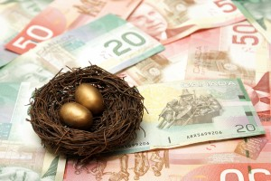 bigstock-Wealthy-Nest-Egg-29498726